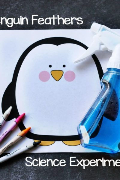How Do Penguins Stay Dry? Penguin Feathers Science Experiment